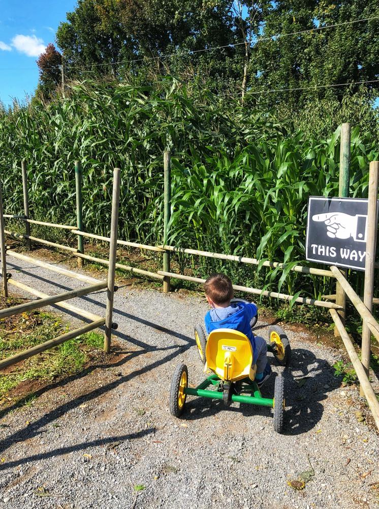 Applebarn Pumpkin Farm: Ultimate U-Pick Farm Experience ...